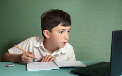 Online doučování žáků a studentů