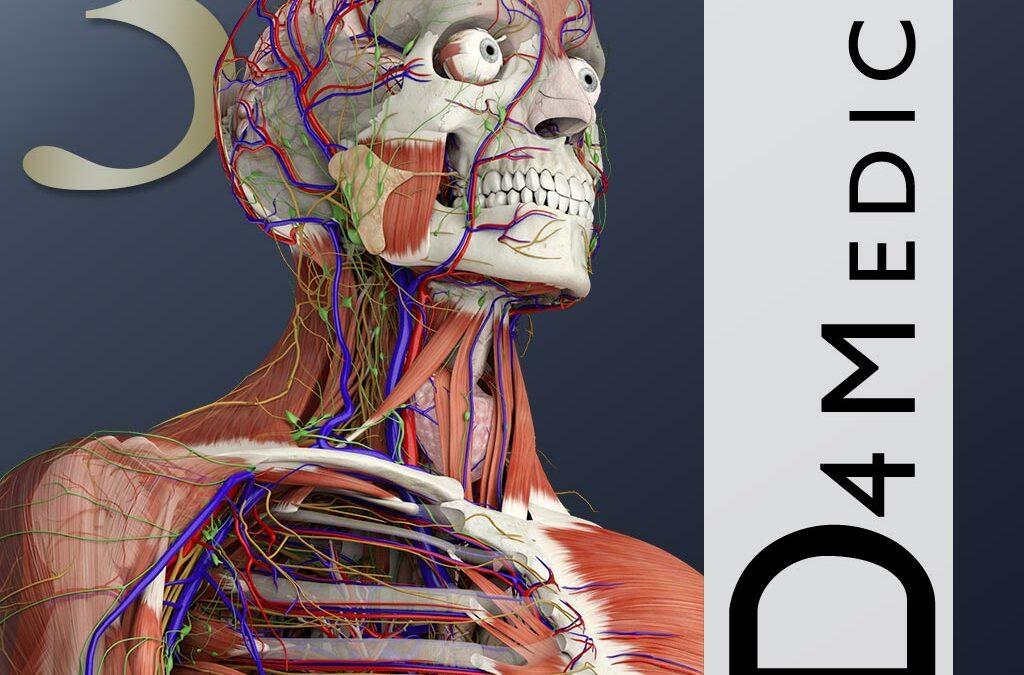 Essential Anatomy 3 for Organization